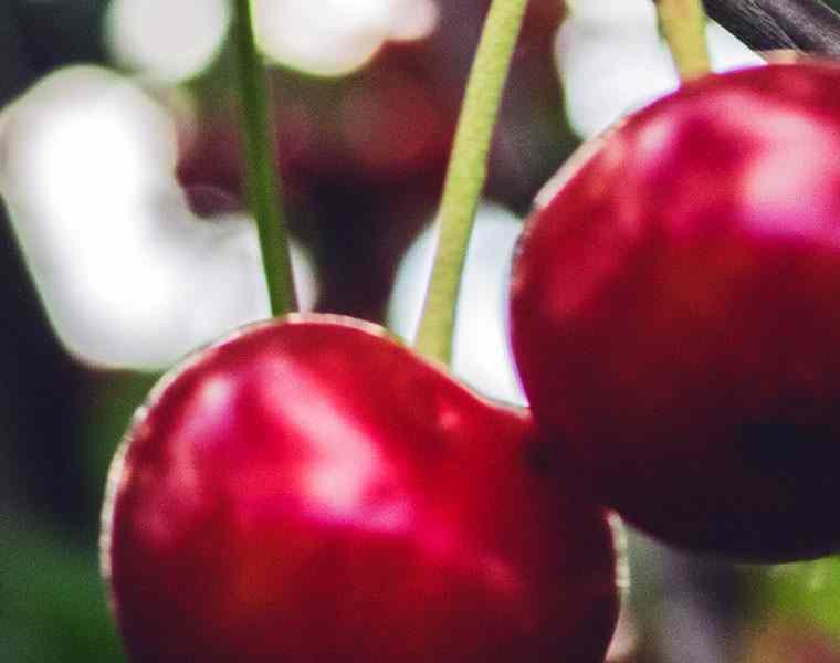 Image of Cherrys